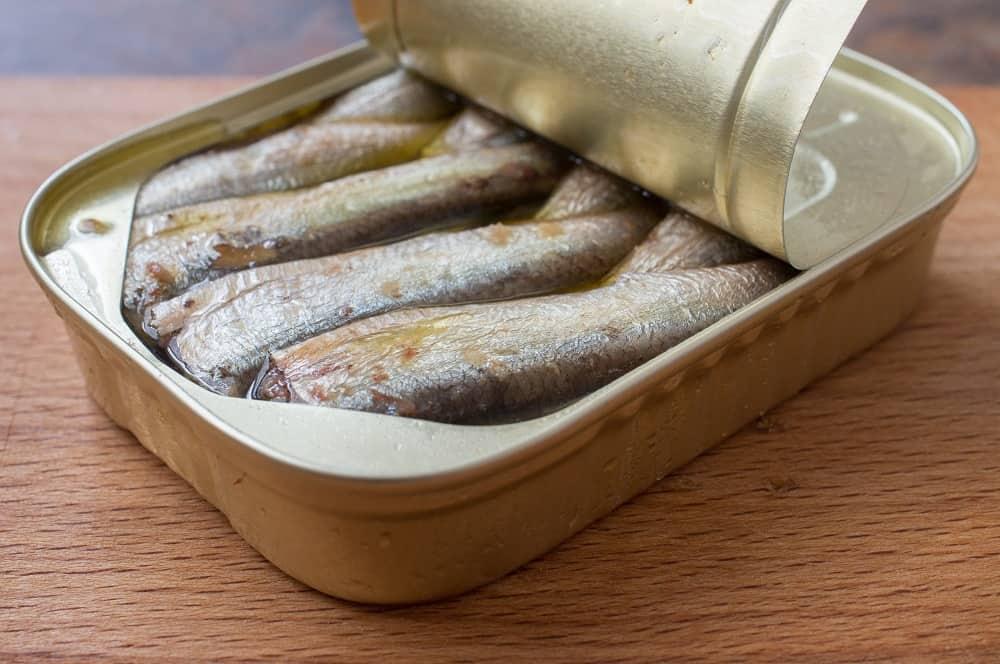 sardines safe during pregnancy