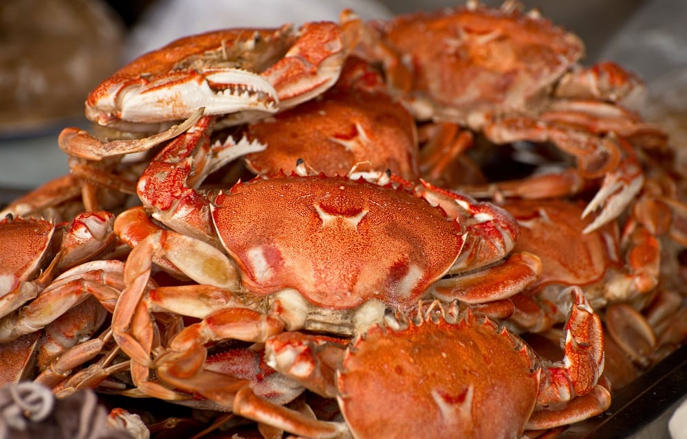 crabs during pregnancy