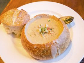 is clam chowder safe during pregnancy