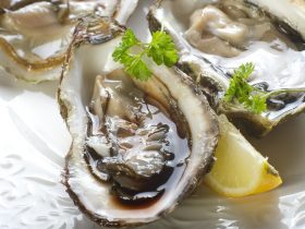 can you eat oysters while pregnant