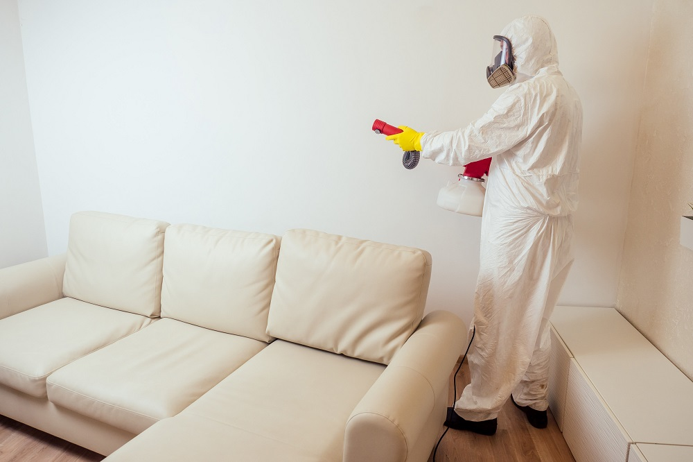 fumigation while pregnant